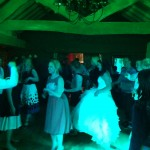 Live Irish Music Paddy's Whiskers Wedding Gig at Bickley Mill, Devon